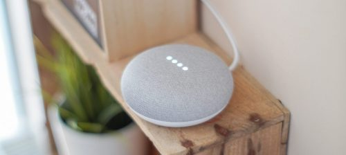 Google Assistant Home Mini